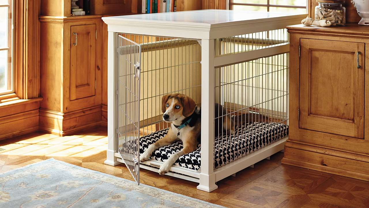 Designer Dog Crates Things You Know About The Dog Crates