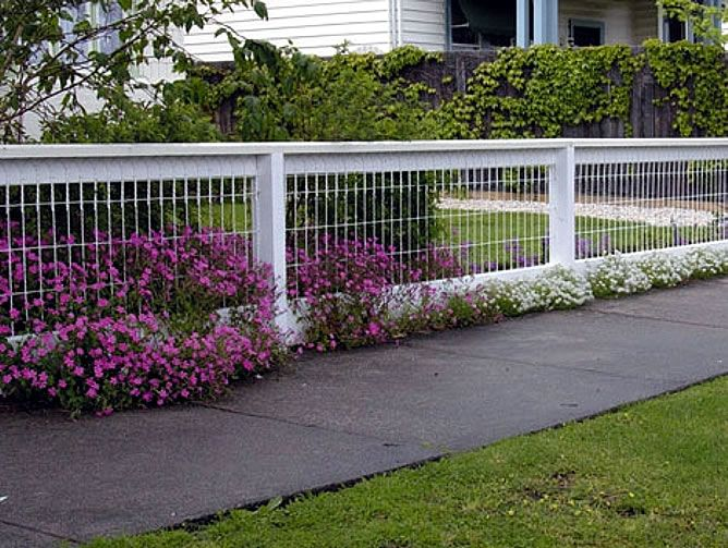 Backyard fencing ideas for your beautifull garden homesfeed - Fence designs for front yards ...