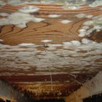 mold in attic of wooden ceiling interior