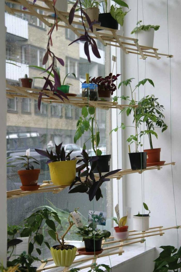 Indoor plant shelves insert natural appeal into the fresh for Ways to hang plants inside