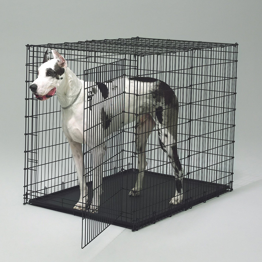 How Big Should Your Dog S Crate Be