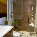 small bath remodels with walk in shower plus glass door and vanity units plus toilet and mirror with brown tile wall and pot plant