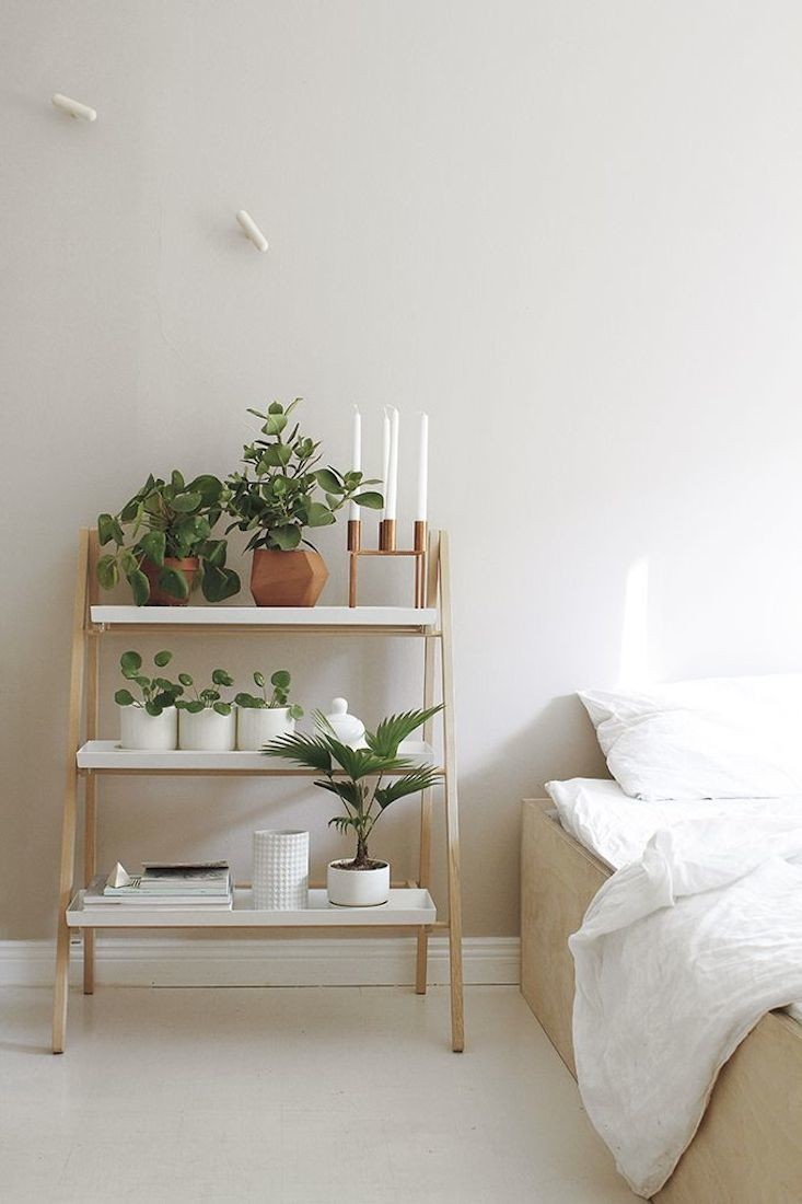 Ideas of including indoor plant shelves in your home s for Indoor picture ideas