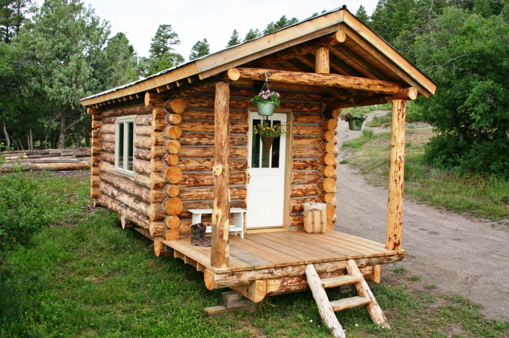 Small rustic cabin plans homesfeed for Tiny house pictures and plans