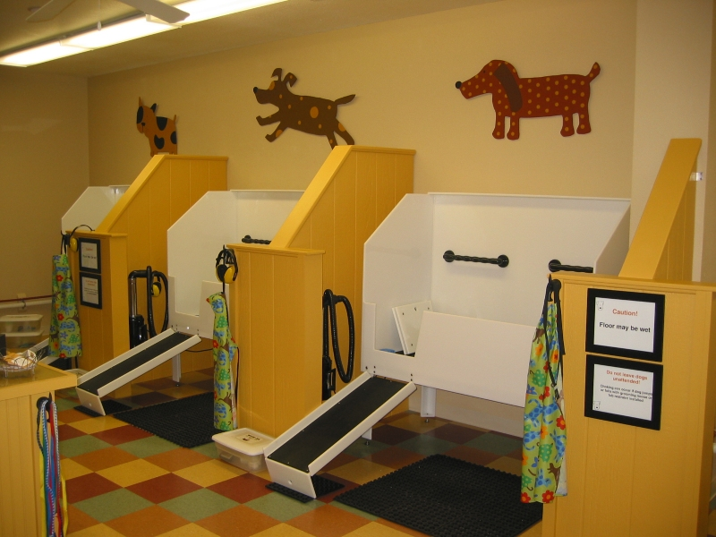 Three Units Of Dogs Wash Sink Stations With Stairs In Pets Care Station