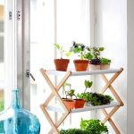 white panel plant rack with wood supports a giant beautiful bottle