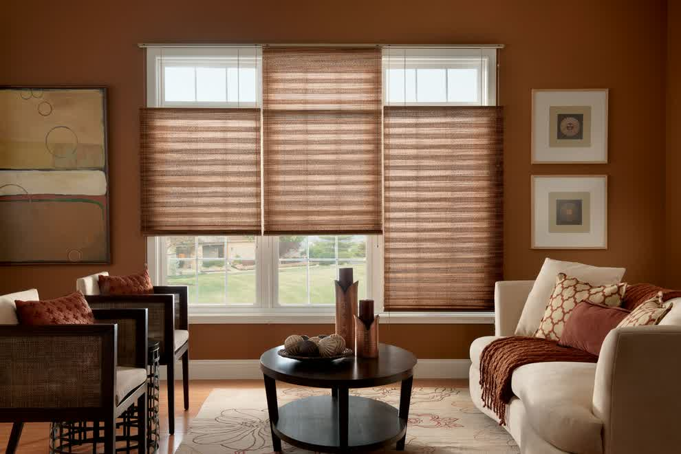 Inspiring window treatments in nyc for amazing window - Living room picture window treatments ...