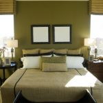 Wonderful Nice Coolest Fresh Earth Tone Paint Coloring With Old Green Wall And Flooring With Nice Same Green At The Blanket And Bedcovering Design