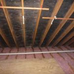 Wooden Ceiling With Mold In Attic