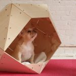 gorgeous geometrical fancy dog crate design made of walnut wood with unique shape upon red rug