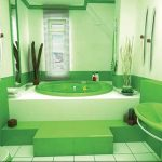 green bathroom ideas with colored bathtubs combined with basin and tissue holder for toilets and tiles for flooring and blinds for bathroom windows