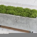 Long Rectangle Concrete Planter Boxes Design With Wheels For Movable Model In Rustic Style With Greenery