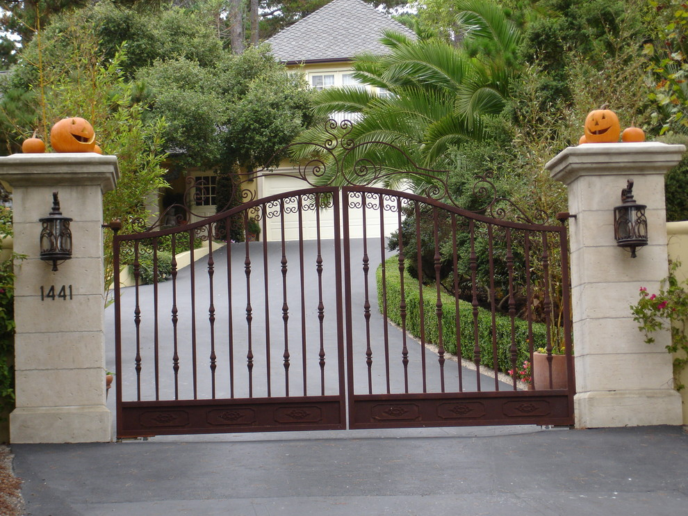 Iron gate designs for homes homesfeed for Wall gate design homes