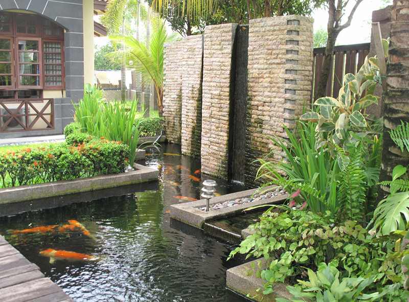 Outdoor Small Landscape With Koi Ponds With Wooden Deck And Greenery And  Tall Wall Beneath Shady