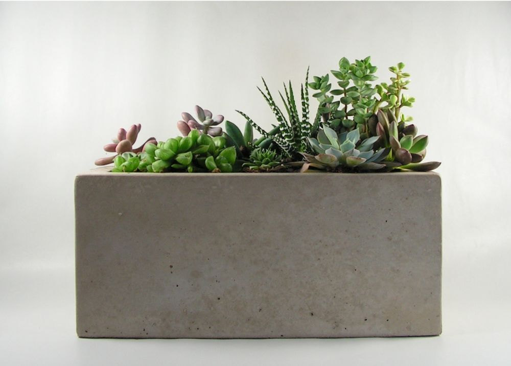 Cement Container Planters : Concrete planter boxes touch your outdoor space with