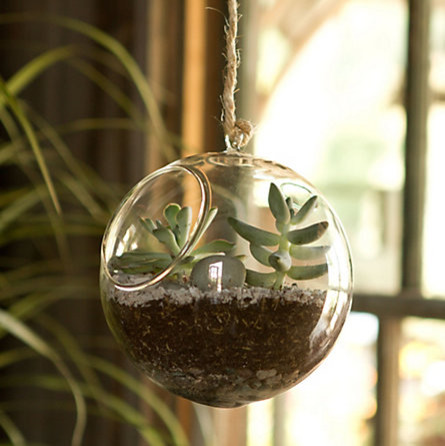 stunning round bowl indoor hanging plant pot with unique small greenery  with rope and big greenery