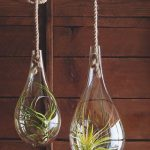 unique and adorable water drop shaped hanging potted plant for indoor necessary with simple greenery with rope and tree trunk