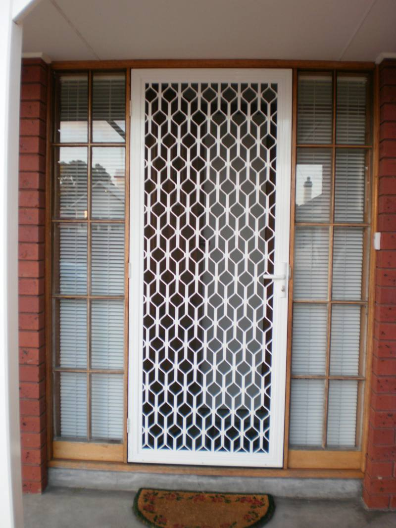 Doors With Screen: Unique Design Security Doors