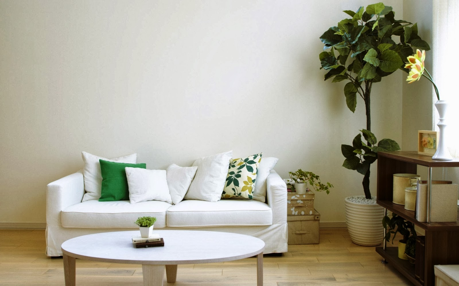 Decorative Plant With White Pot As The Corner Decoration A White Sofa With  White Pillows And
