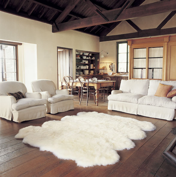Area Rug Ideas Become The Vital Component For Styling And Beautifying Floors Rugs Are Not Only Used As Floor Decorative But They Also Give Crucial