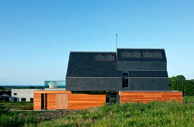 Energy Efficient House Design In Attractive And Minimalist Style With Wood  Planks Wall Systems And Black