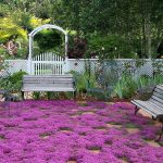Perennials For Zone 7 In Beautiful Home Garden Ideas With Bench And Beautiful White Wooden Fence And Metal Armchair For Evening Tea