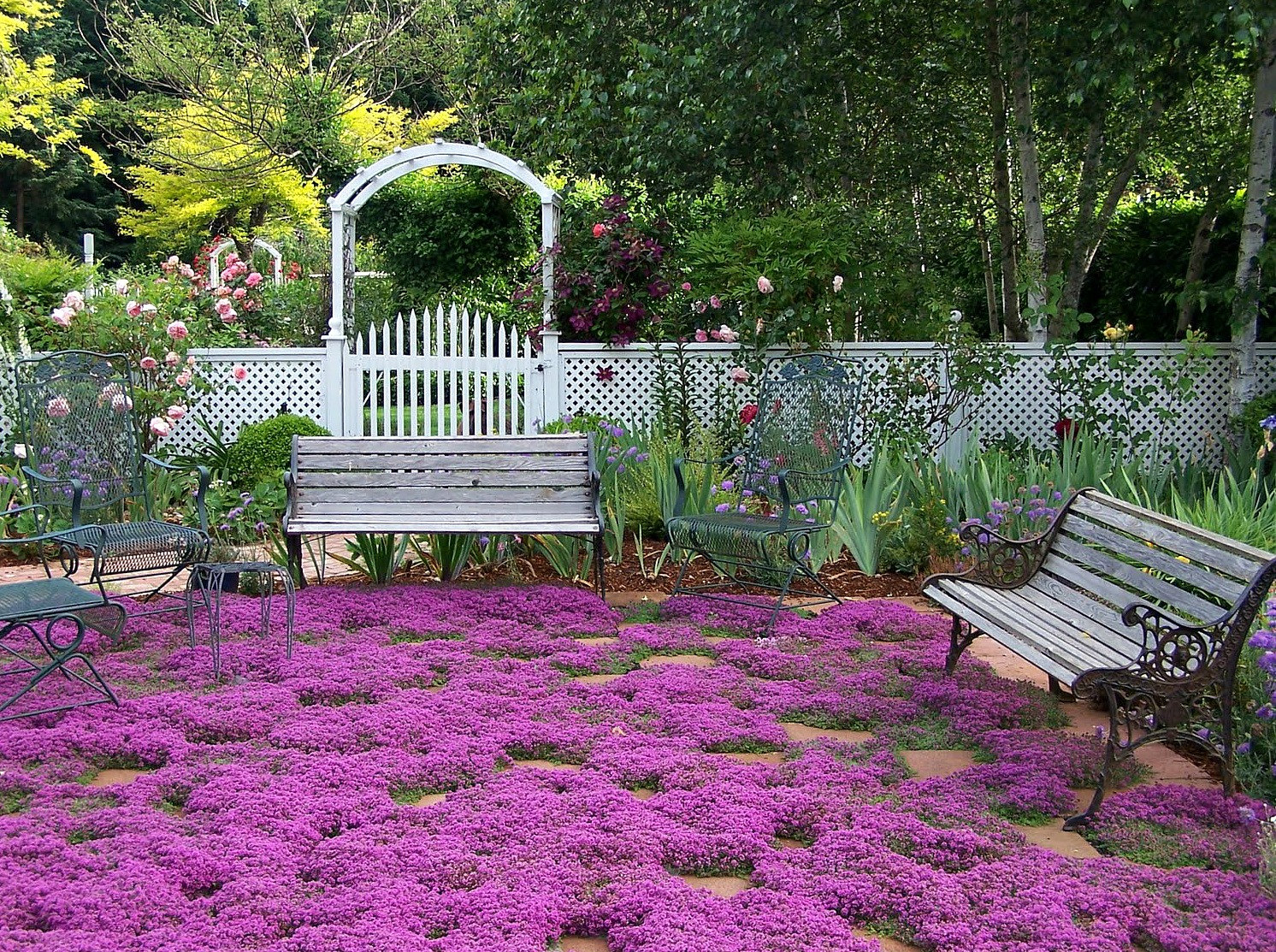 Perennial zone 7 that will adorn your beautiful garden for Garden design zone 7