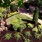 small landscaping ideas for front of house with concrete walkways and green plant and trees