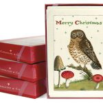 unique boxed christmas cards cavallini and co with owl theme