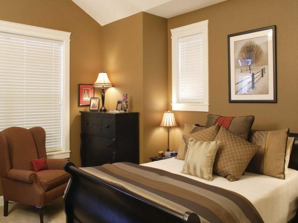 interior paint colors for 2014 in brown scheme for bedroom with divan bed  plus comfy bedding