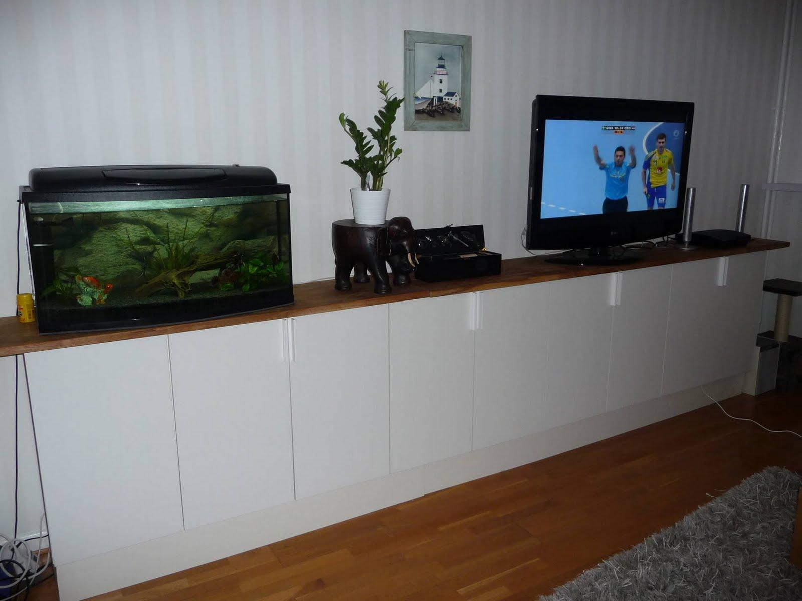 Long Cabinet Aquarium Tv Pot Plant Rug. Long Cabinet Media Hardware