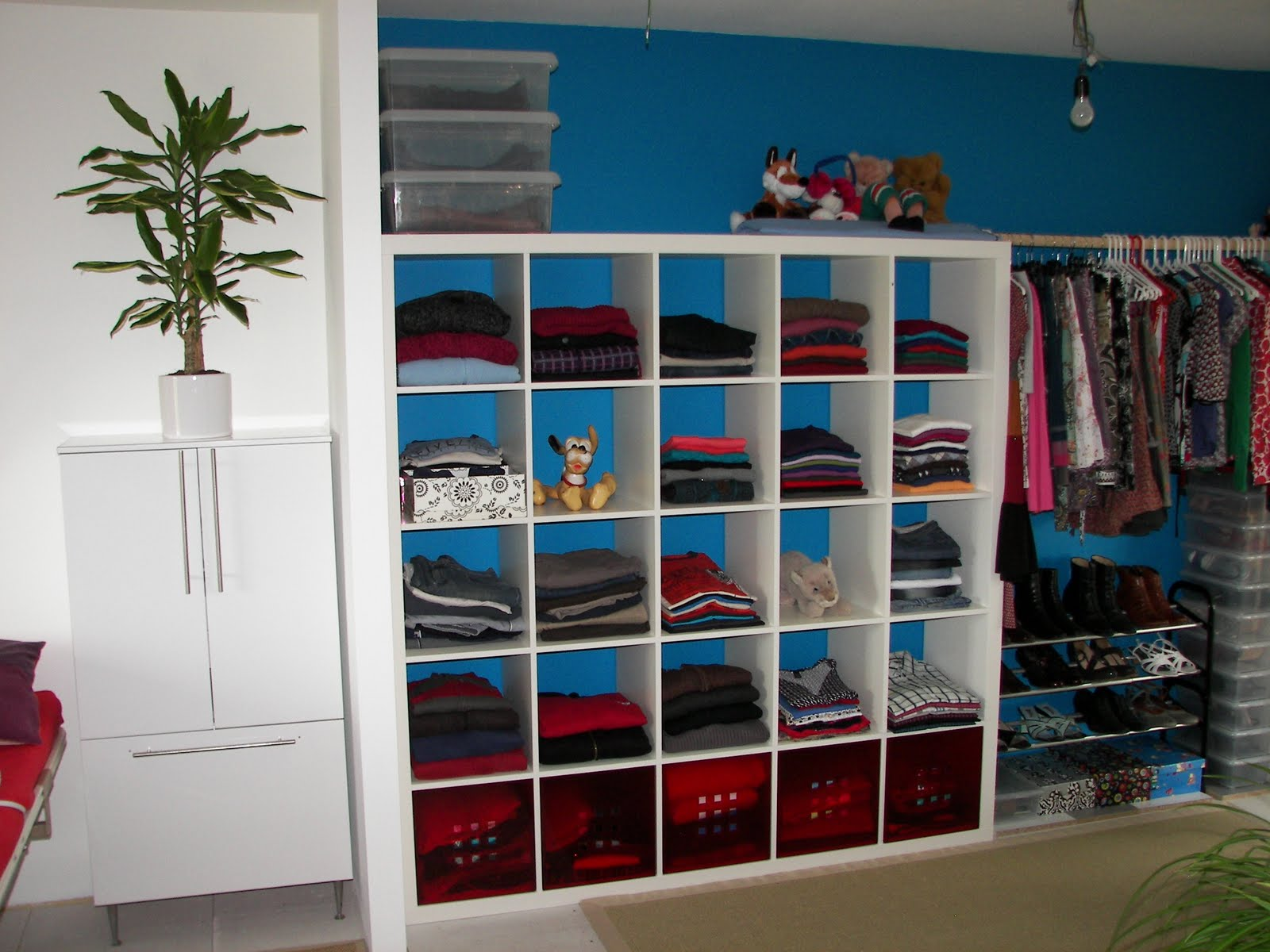 Superbe Modern Blue Closet Organizer For Small Closet Idea With Structural Racks  And Clothes Hanger And Pendant