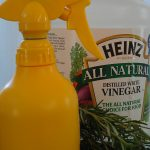 simple white vinegar cleanser spray to get rid of pet odor cute yellow spray bottle
