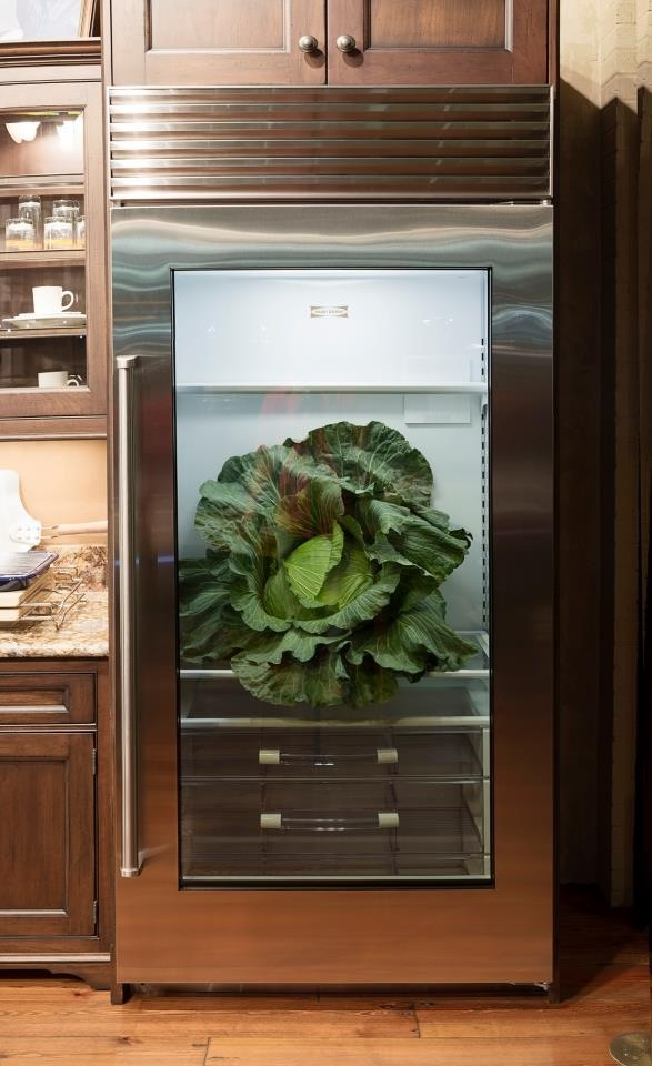 Glass Front Refrigerator For Home Showcasing Shop Style In Private