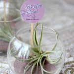 terrarium plant placed in round glass for unforgettable wedding gift plus simple wedding gifts ideas
