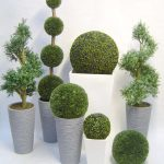 various shaped boxwood topiary balls design with gray pots for interior decoration