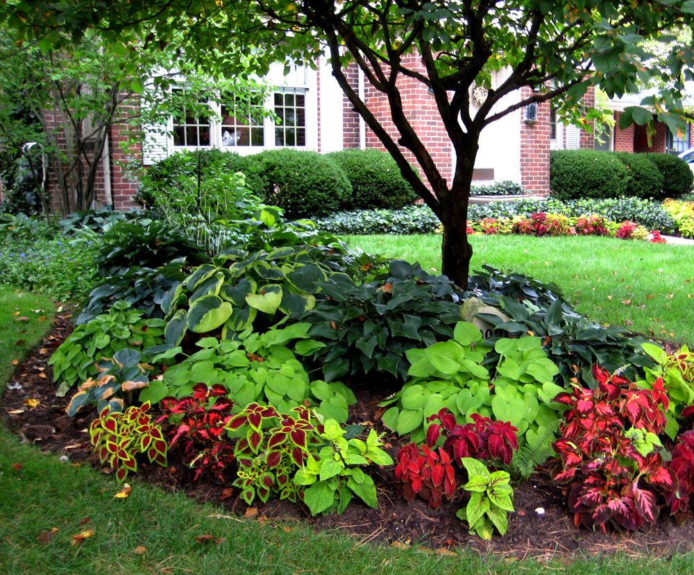 Design your own landscape homesfeed for Landscape design pictures