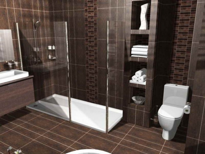 A Bathroom Floor Plan In 3D Version Which Presents A Glass Framed Shower  Space Without Door