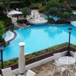 Custom Beautiful Swimming Pool Design With Fresh Plants Around
