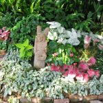 Freah Shade Garden