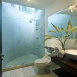 Glass Shower Cabin Door With White Wall Painted And Skylight Ceiling