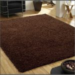 Large brown bathroom rug