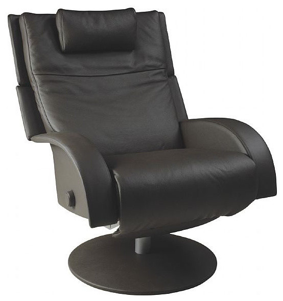 modern swivel recliner options homesfeed. Black Bedroom Furniture Sets. Home Design Ideas
