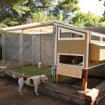 Perfect Chicken Coop Idea With Green Grass