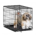 Simple Dog Crate With Dog