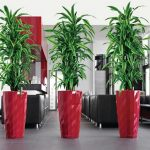 Sweet red concrete boxes for tall decorative plants