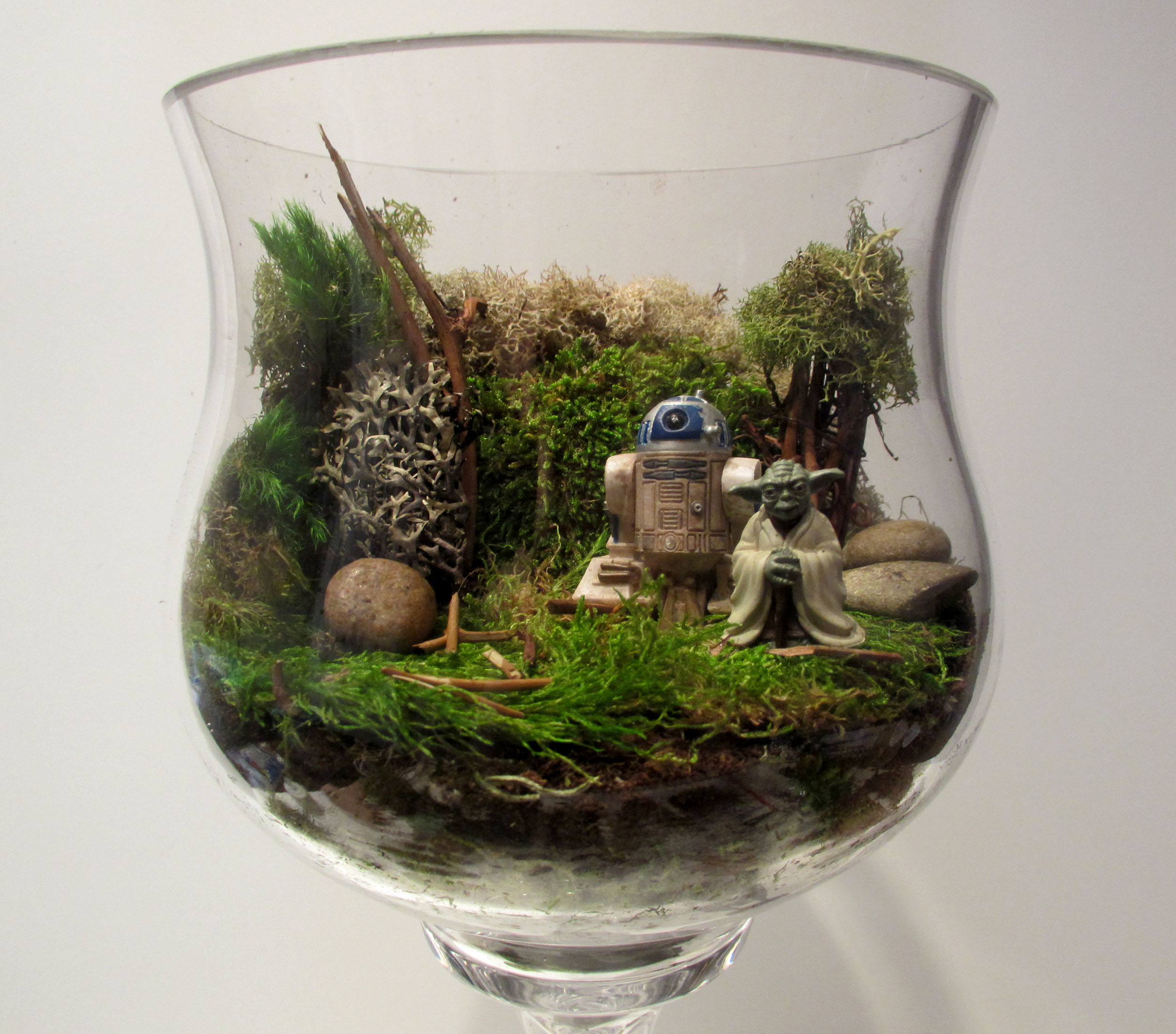 glass terrarium containers homesfeed. Black Bedroom Furniture Sets. Home Design Ideas
