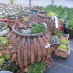 Unique Garden Planters With Random Shape And Size Of Pot