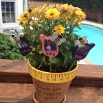 adorable sweet potted plants daycare teacher gift design on yellow pot with low growing flower on wooden deck