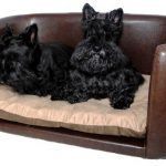 brown leather stylish dog beds for two small dogs